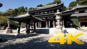 Hase-Dera-Kamakura-長谷寺-4K-Ultra-HD