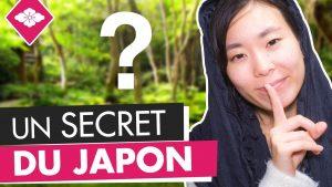 LE-TEMPLE-LE-PLUS-SECRET-DU-JAPON