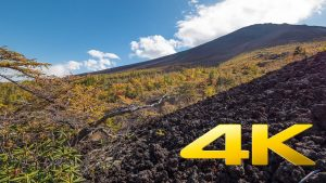 Fuji-5th-Station-autumn-colors-Yamanashi-富士山-五合目-4K-Ultra-HD