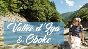 La-vallée-dIya-Oboke-『Tokushima』