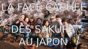 LA-FACE-CACHEE-DES-SAKURA-LES-JAPONAIS-ALCOOLIQUES-