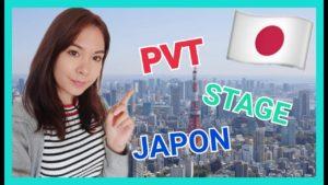 TRAVAILLER-AU-JAPON-CONSEILS-VISA…