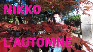 Le-Koyo-à-Nikko-au-Japon-Couleur-Automne