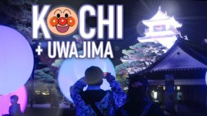 KOCHI-UWAJIMA-La-CAMPAGNE-JAPONAISE-méconnue-3